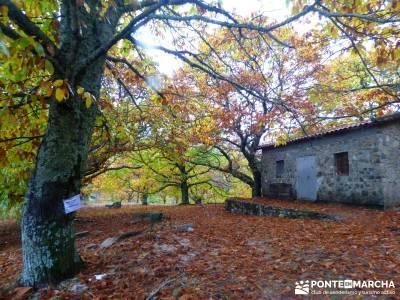 Senda Viriato; Sierra San Vicente; patones rutas embalses comunidad de madrid rutas por la sierra de